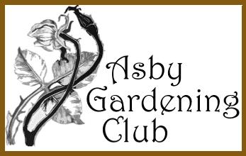 AGC Logo with brown border